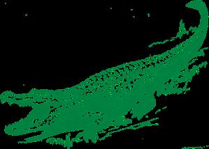 alligator-306548_960_720